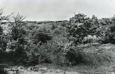 PB4434 Het Quackjeswater, ca. 1958