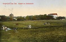 PB5186 Koeien op een weiland nabij de duinen. Op de achtergrond Koepel Zeeburg en Pension Sonnevanck, ca. 1930