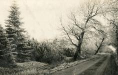 PB5567 Kijkje in de Groeneweg, ca. 1936