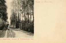 PB5740 Kijkje in de Groene of Uilevluchtse weg, ca. 1903
