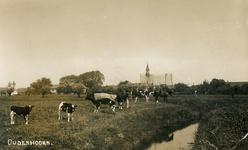 PB7016 Beeld van agrarisch Oudenhoorn met koeien, de kerk een de pastorie, ±1935