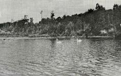 PB7292 Natuurgebied Tenellaplas, ca. 1950