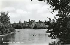 PB7296 Natuurgebied Tenellaplas, ca. 1950