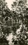 PB7300 Rockanje; Natuurgebied het Quackjeswater, 1963