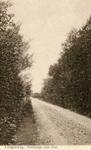 PB7654 Kijkje op de Langeweg, ca. 1935