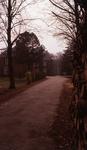 DIA30040 Landhuis Olaertsduin; 30 april 1976