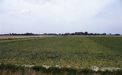 DIA35085 De Dorpsweg, gezien vanaf de Ruigendijk; ca. 1993
