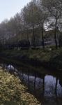 DIA40305 Gezicht op het Noordeinde en de Boezem vanaf de Molenlaan; 20 mei 1972