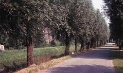 DIA40606 Fietspad en bomen langs de Vierambachtenboezem; 27 juli 1979