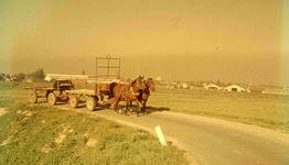 DIA41577 Paarden voor lege hooiwagens; September 1963