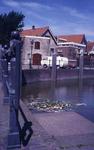 DIA42205 Spijkenisse; ; Afval drijft tussen de waterlelies in de Oude Haven, ca. 1985