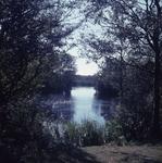 DIA_GF_1008 Kijkje op de Tenellaplas; 31 augustus 1962