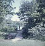 DIA_GF_1031 Kijkje op de Tenellaplas; 19 augustus 1962