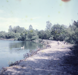 DIA_GF_1038 Kijkje op de Tenellaplas; 19 augustus 1962