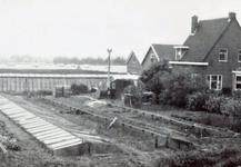 AB_HAASDIJK_030 Het tuindersbedrijf Iz. van den Hoonaard en Jaapje Noordermeer; ca. 1970
