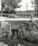 AB_OUDELANDSEDIJK_005 Abbenbroek; Een heul die in 1936 is aangelegd in het kader van de werkverschaffing, 1997