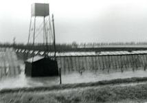 AB_WATERSNOODRAMP_025 Tuinderij; 1 februari 1953