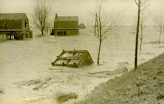 AB_WATERSNOODRAMP_029 Kippenhok door de stroming weggevoerd; 2 februari 1953