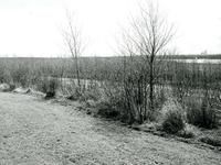 BR_BRIELSEMEER_102 Het recreatiegebied langs het Brielse Meer, bij de Krabbeweg voor de aanleg van het golfterrein ...