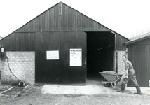 BR_KLOOSTERWEG_018 Open dag bij boeren en tuinders. De heer Koster rijdt een kruiwagen voer een schuur binnen; ca. 1985