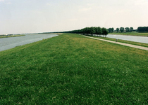 GV_BRIELSEMAASDIJK_01 Geervliet; De Brielse Maasdijk tussen het Voedingskanaal en het Hartelkanaal, ter hoogte van ...
