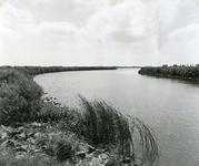 HV_TOLDIJK_07 De Bernisse, gezien vanaf de Toldijk, toegang tot het Voedingskanaal; ca. 1980