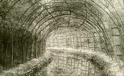 OV_EENDENKOOI_01 De eendenkooi in 't Poldertje; ca. 1900