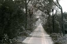 OV_GROENEWEG_01 Kijkje in de Groeneweg; ca. 1930