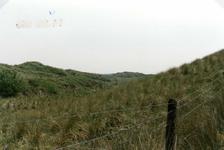 OV_OOSTVOORNSEMEER_04 Oostvoorne; Het Groene Strand ten zuiden van het Oostvoornse Meer, 14 juni 1989