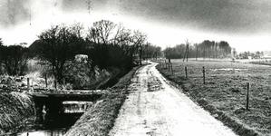 OV_RIETDIJK_08 De Rietdijk, tussen de Westvoornseweg en de boerderij van dhr. Kome; 5 februari 1990