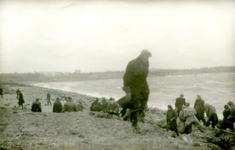 OV_WATERSNOODRAMP_033 Oostvoorne; Vrijwilligers werken aan het versterken van de Brielse Maasdam, 1 februari 1953