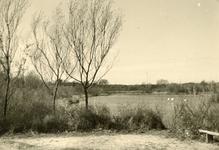 RO_DUINSTRAAT_06 Gezicht op de Tenellaplas; ca. 1965
