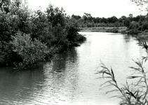 RO_DUINSTRAAT_16 Gezicht op de Tenellaplas; ca. 1960