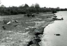 RO_DUINSTRAAT_17 Gezicht op de Tenellaplas; 1968