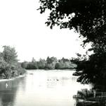 RO_DUINSTRAAT_18 Gezicht op de Tenellaplas; 1959