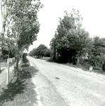 RO_KORTEWEG_27 Kijkje in de Korteweg; 8 september 1964