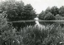 RO_QUACKJESWATER_01 Het Quackjeswater; 1965
