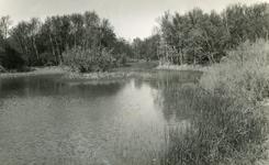 RO_QUACKJESWATER_10 Rockanje; Het Quackjeswater, ca. 1965