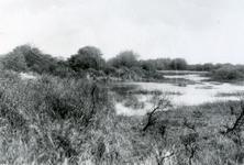 RO_QUACKJESWATER_13 Rockanje; Het Quackjeswater, 1929