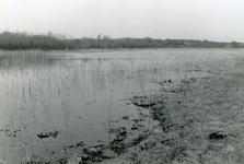 RO_QUACKJESWATER_14 Het Quackjeswater; 1929