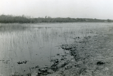 RO_QUACKJESWATER_14 Rockanje; Het Quackjeswater, 1929