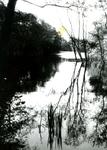 RO_QUACKJESWATER_19 Het Quackjeswater; 12 juni 1962