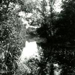 RO_QUACKJESWATER_21 Het Quackjeswater; 31 juli 1961
