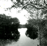 RO_QUACKJESWATER_22 Het Quackjeswater; 14 september 1961