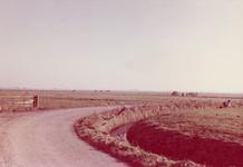 SP_BREEWEG_005 De Breeweg, gezien in zuidoostelijke richting waar nu het Marrewijkflat staat; 1961