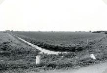 SP_LAGEWEG_002 De wijk Vogelenzang, gezien vanaf de Lageweg. Op de achtergrond de boerderij langs de Westdijk; ca. 1970