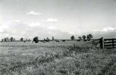 SP_MEELDIJK_020 De boerderij van Bodegom (links) en De Snayer (rechts) aan de Lange Schenkeldijk, gezien vanaf de ...