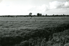 SP_MEELDIJK_025 Kijkje op de polder Braband vanaf de Meeldijk of Houwerseweg. Op de achtergrond het dorp Spijkenisse. ...