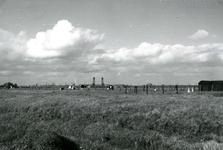 SP_MEELDIJK_027 Kijkje op de koeien in de polder Braband vanaf de Meeldijk of Houwerseweg. Op de achtergrond de ...
