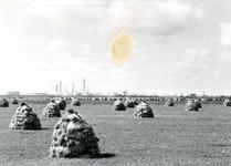 SP_WELPLAAT_034 De polder met op de achtergrond de ESSO raffinaderij op de voormalige Welplaat; 22 september 1961
